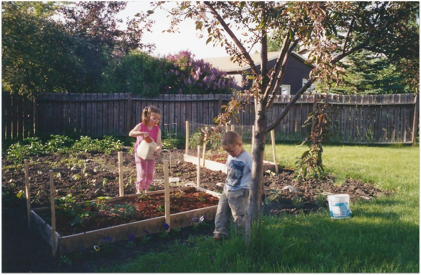 garden362