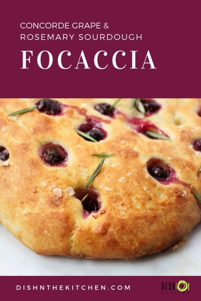 An easy to make sourdough focaccia recipe made even more delicious with concorde grapes, rosemary, olive oil, and sea salt. #sourdough #focaccia #sourdoughfocaccia